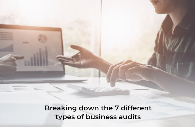 Business audits